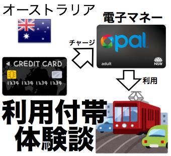 海外旅行保険 利用付帯体験談 電子マネー